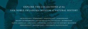 Collections and Research