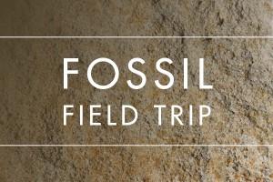 Fossil Field Trips