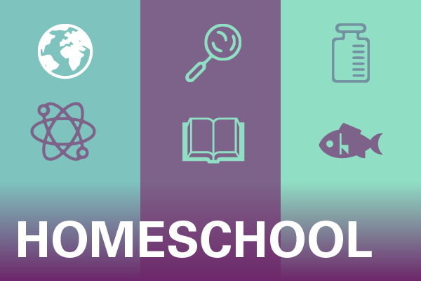 Link to Homeschool Programs