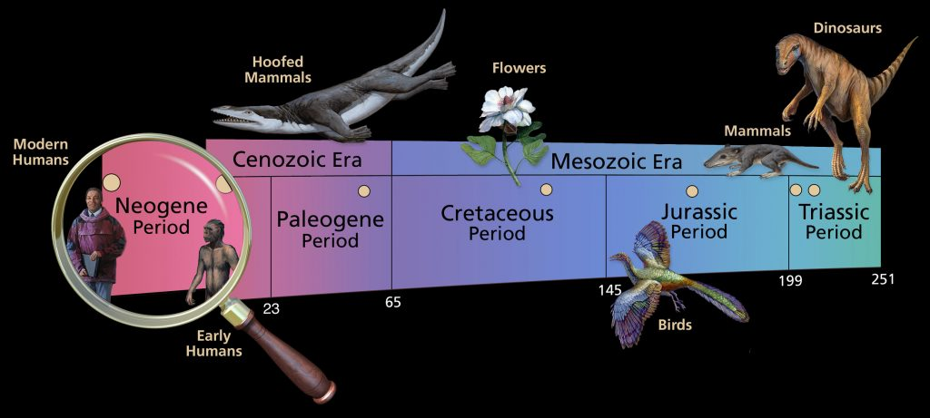 mesozoic-and-cenozoic