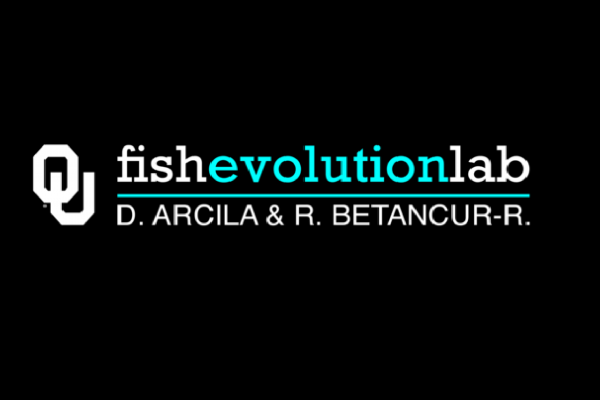 Link to Fish Evolution Lab