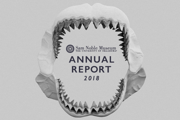 Link to 2018 Annual Report