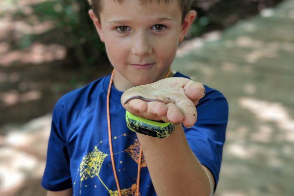 Link to Summer Explorers