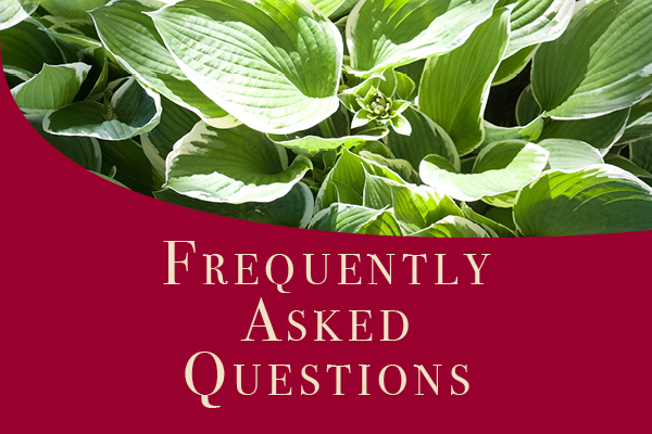 Reopening FAQ