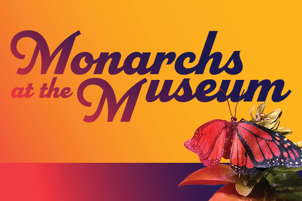 Link to Monarchs at the Museum