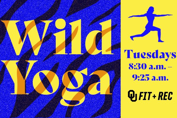 Link to Wild Yoga at the Museum