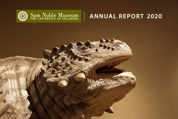 Link to 2020 Annual Report
